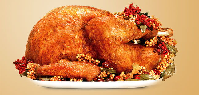 Turkey – Providing You Nutrients Throughout the Holiday!